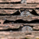 DIY Roof Repair: How to Fix Asphalt Roofing